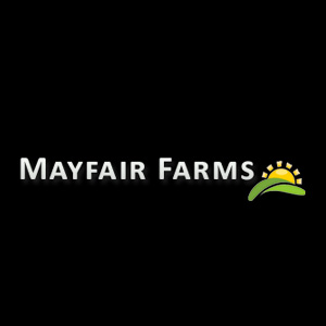 smak-dab-mustards-mayfair-frams